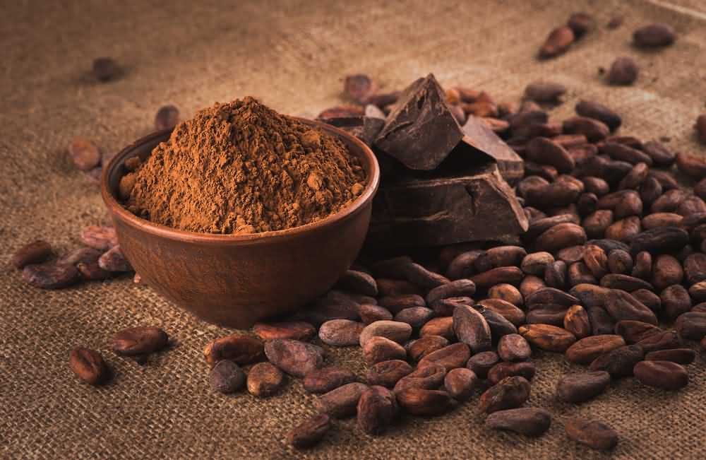 Foods high in magnesium, Magnesium deficiency treatment, Cocoa Powder